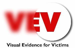 visual-evidence-logo
